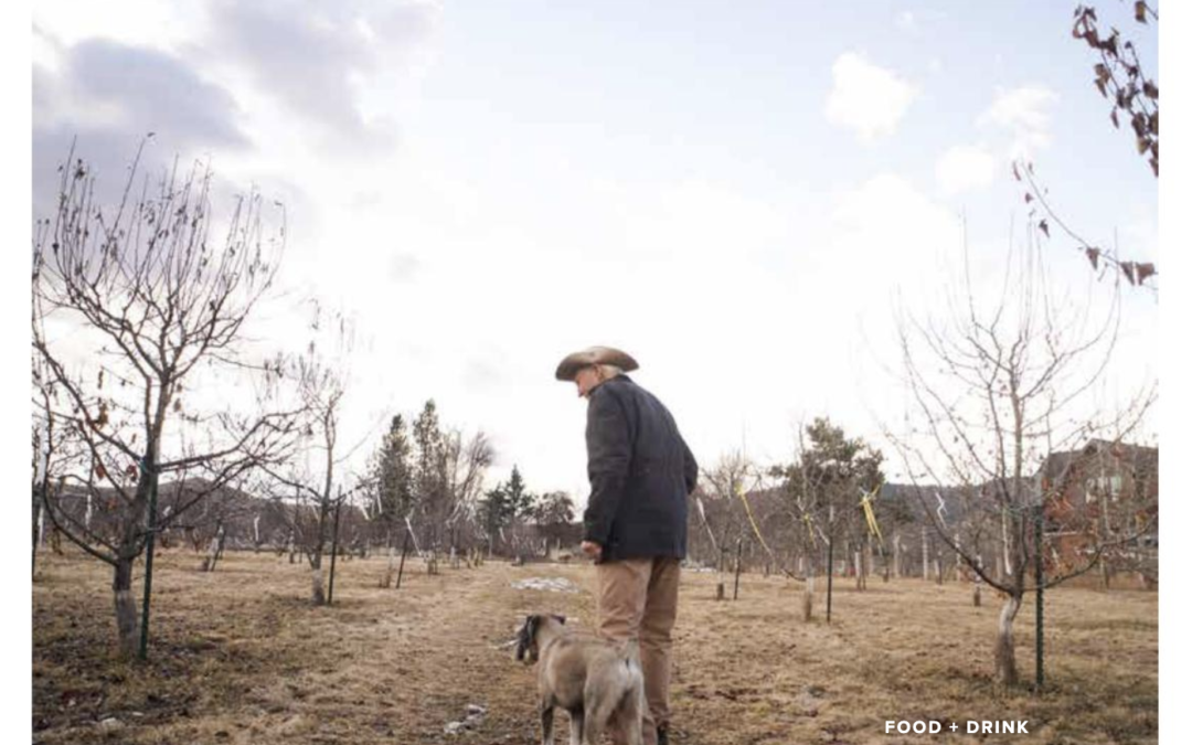 The Fruits of Labor FARMER FRED IS COMMITTED TO KEEPING HIS ORCHARD ORGANIC